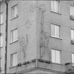 Neoniniai-namo-gyventojai-Vaidotas-Aukstaitis)
