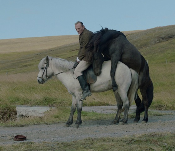 """Šiaurės šalių filmuose """"Scanoramoje"""" – arkliai, alkoholis ir pankės"""